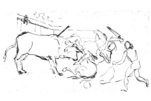 Guiaud dessin Corrida